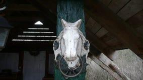 Scultura del cavallo bianco Immagine Stock
