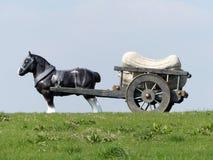 Scultura del cavallo e del carretto di Perceval da Sarah Lucus, collina del mulino a vento, Waddesdon immagini stock libere da diritti