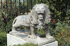 Scultura del leone della pietra di Francoforte Immagine Stock