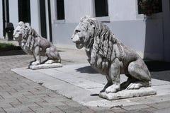 Scultura del leone in giardino italiano fotografie stock libere da diritti