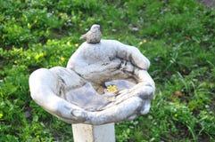 Scultura del parco, mani, uccello, fiore immagine stock