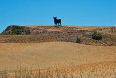 Scultura del toro in campagna andalusa Fotografie Stock Libere da Diritti