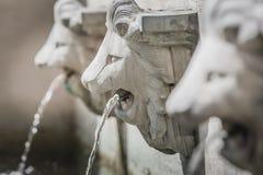 Scultura delle fontane della testa del leone Fotografie Stock Libere da Diritti