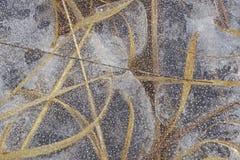 Scultura di ghiaccio che incastona erba curva 7 fotografia stock