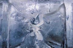 Scultura di ghiaccio nella barra del ghiaccio Fotografia Stock Libera da Diritti