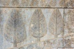 Scultura di pietra in Persepolis Immagini Stock