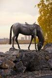 Scultura di un cavallo di ferro sulla sponda del fiume immagini stock