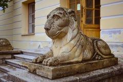 Scultura di un leone adagiantesi sul quadrato al palazzo di Pavlovsk Fotografia Stock Libera da Diritti