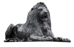 Scultura isolata di un leone quadrato di Trafalgar Immagine Stock Libera da Diritti