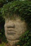 Scultura mesoamerican gigantesca della testa della pietra con i capelli della pianta verde Immagini Stock