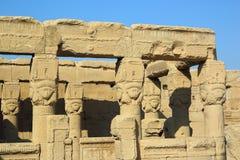 Sculture antiche di Hathor dell'Egiziano in tempio di Dendera Fotografie Stock