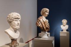 Sculture del busto nel museo Berlino di Altes Immagini Stock Libere da Diritti