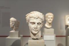 Sculture del busto nel museo Berlino di Altes Fotografia Stock Libera da Diritti