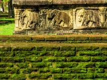 Sculture dell'elefante in Polonnaruwa, Sri Lanka Immagini Stock
