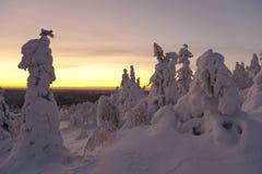 Sculture della neve Fotografia Stock