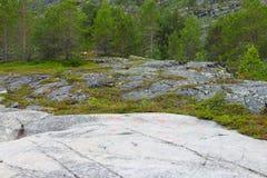 Sculture della roccia a Alta Immagine Stock