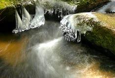 Sculture di ghiaccio Fotografia Stock