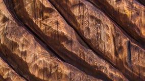 Sculture di legno di struttura del fondo immagine stock