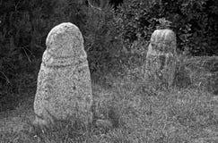 Sculture di pietra antiche Il museo archeologico Tanais, Russia Immagini Stock Libere da Diritti