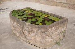 Sculture di pietra dello stagno di loto Fotografie Stock