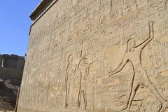 Sculture Hieroglyphic su una parete egiziana del tempiale fotografia stock