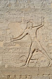 Sculture Hieroglyphic su una parete egiziana del tempiale Immagine Stock Libera da Diritti