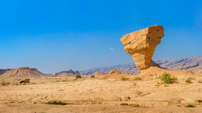 Sculture operate nel deserto Fotografia Stock