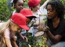 Scuola dei bambini e dell'insegnante che impara giardinaggio di ecologia immagini stock libere da diritti