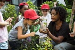 Scuola dei bambini e dell'insegnante che impara giardinaggio di ecologia immagini stock
