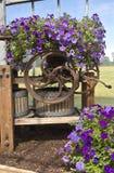 Scuola materna del giardino e dell'azienda agricola in Canby Oregon Fotografie Stock