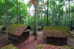 Scuola politica e militare di spirito rosso della foglia di acero al hin Rong di Phu Fotografie Stock
