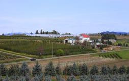 Scuole materne ed aziende agricole di albero. Immagine Stock