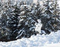 Sécurité dans Davos Photographie stock libre de droits