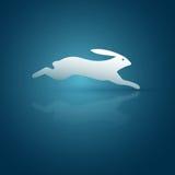 Scurry Rabbit Royalty Free Stock Photos