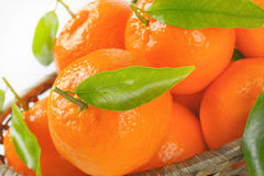 Scuttle of ripe tangerines. Close up of ripe tangerines in scuttle Royalty Free Stock Image