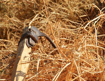 Scythe in haystack. An old scythe sticked in a  haystack Royalty Free Stock Images