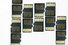 在白的安全数字资料的SD卡片 库存图片