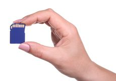 SD card Royalty Free Stock Images