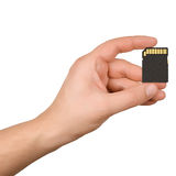 SD Card Stock Photo