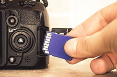 Sd card hand Royalty Free Stock Images