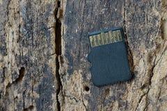 SD card  on wood Stock Photo