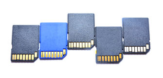Sd cards Stock Photography