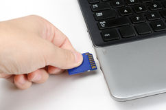 Σύνδεση στην κάρτα SD στο lap-top Στοκ εικόνες με δικαίωμα ελεύθερης χρήσης