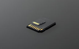 SD and Micro SD card. Stock Photography