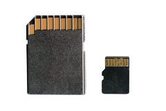 SD and micro SD cards isolated on white Stock Photography