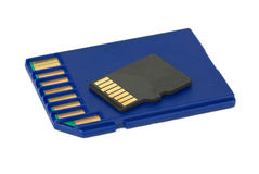 SD and MicroSD cards Royalty Free Stock Photo