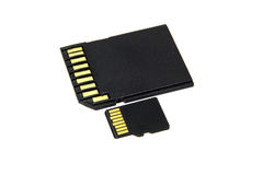 SD preto e micro cartão de memória do SD Fotografia de Stock