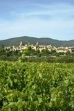 södra vingårdar för france lourmarin Arkivfoton