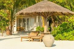 Sdrai di legno sotto un ombrello della palma su una spiaggia esotica sabbiosa con le palme alte Immagine Stock