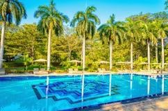 Sdrai ed alta palma Beruwala, Sri Lanka Fotografia Stock